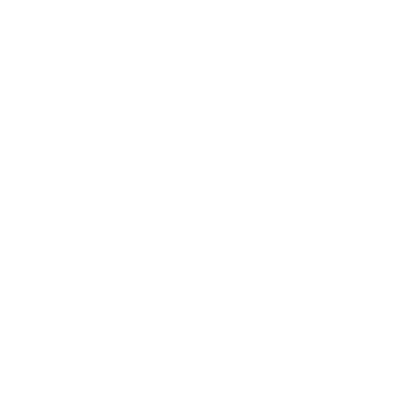 Play 365